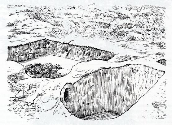 Weinkelter in Juda