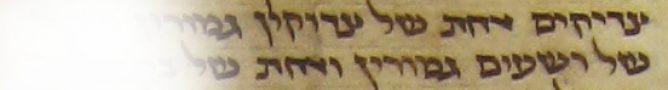 Testimonia Talmud Yerushalmi