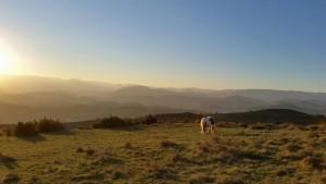 Ardèche - Märchenlandschaft
