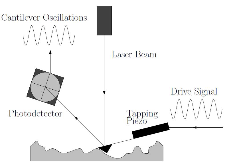 Scanning Probe Microscopy (SPM) | Kläui - Lab