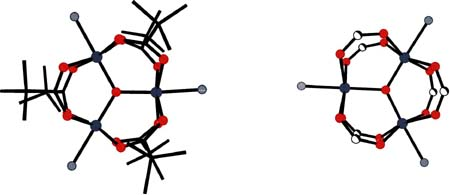 Structures of [Fe2IIIFeIIO(tBuCOO)6(pic)3] and [Fe2IIIFeIIO(HCOO)6(γ-pic)3]