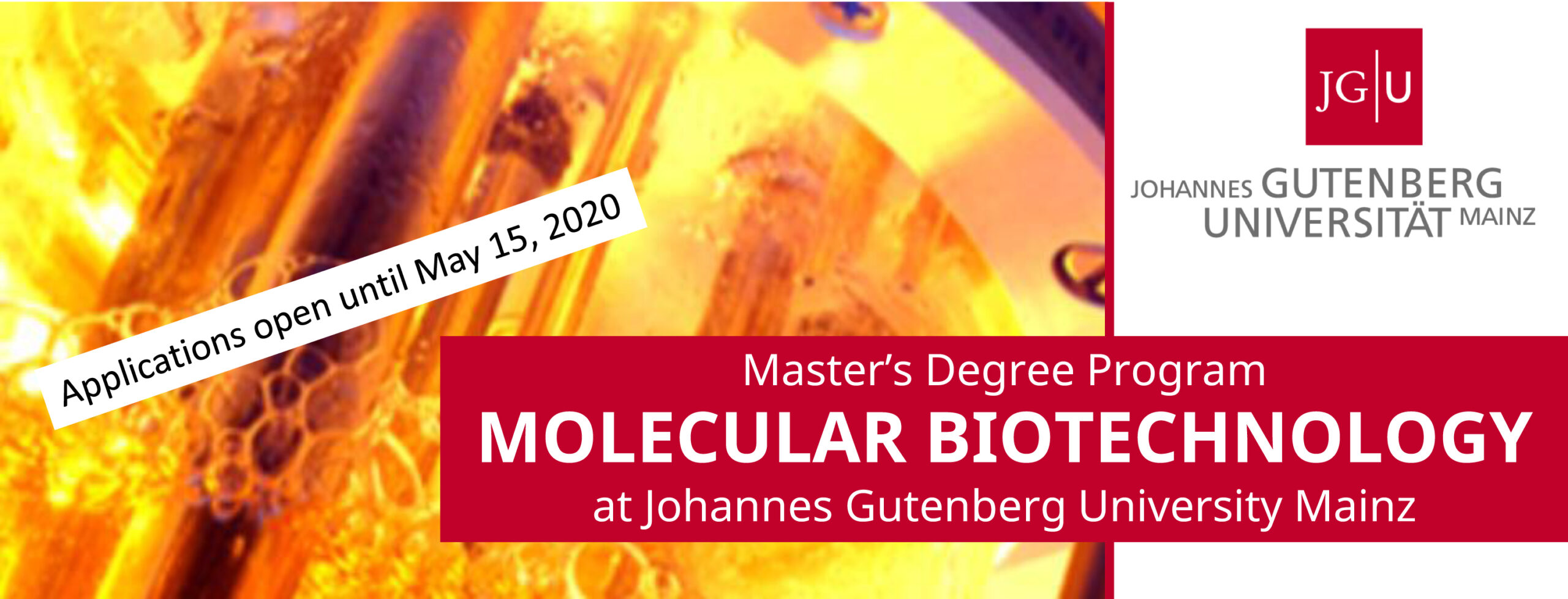 Masters Program Molecular Biotechnology starts in winter term 2020/2021. Application is possible until May 15,2020 through Jogustine portal